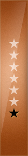 Bronze Star